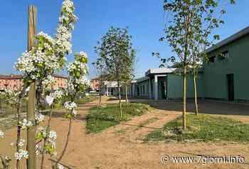 Tribiano: rimesso a nuovo il giardino della scuola materna - 7giorni