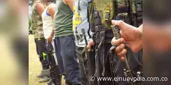 Jóvenes tolimenses reclutados forzadamente estarían en filas de la Segunda Marquetalia - El Nuevo Dia (Colombia)