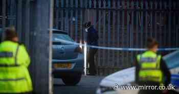 Teenager seriously injured in stabbing at 'wake for crash victim'