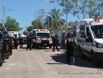 Abuelito muere al caer de una mata de caimito, en Mérida - El Diario de Yucatán