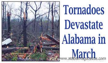 Tornadoes Devastate Alabama in March