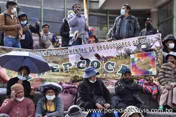 Flores asegura que Lluta responde a intereses políticos y empresariales - Periódico Bolivia