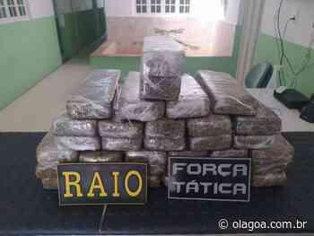 25 quilos de maconha são apreendidos em ônibus em Brejo Santo - O Lagoa