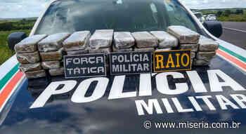 PM de Brejo Santo apreende 25 Kg de maconha que passavam pelo Cariri desde São Paulo - Site Miséria