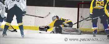 1st Annual Community Cup celebrates end of hockey season in Souris - peicanada.com