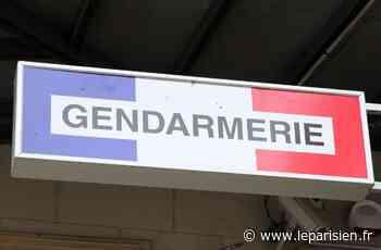 Nangis : le chauffard en fuite responsable de l'accident condamné à 5 ans de prison - Le Parisien