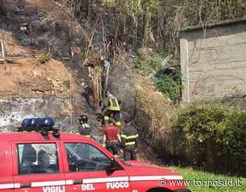 BEINASCO - Incendio nella boscaglia lungo il Sangone - TorinoSud