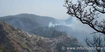 La Primavera: Activan alerta atmosférica en Ameca y Tala por incendio - EL INFORMADOR
