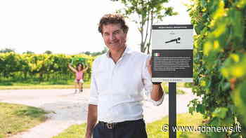 """Crocetta del Montello, si amplia la """"Palestra in vigna"""" di Villa Sandi: un percorso benessere immerso nei filari - Qdpnews"""
