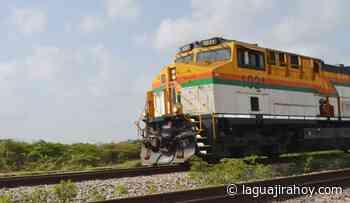 Wayuu muere arrollado por tren de Cerrejón en zona rural de Uribia - La Guajira Hoy.com