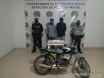 Sujetos fueron capturados por pretender comercializar marihuana en Paicol - Diario del Huila