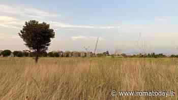 """Centocelle, una passeggiata in difesa del Parco archeologico: """"Teniamo alta l'attenzione"""""""