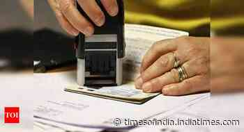 'Over 40 countries resumed visa processing in India'