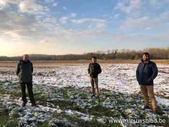 Plaats voor padel op Bruul (Holsbeek) - Het Nieuwsblad