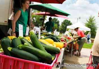 South Side mid-week farmers market to debut in July