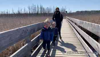 Ottawa's big back yard: 150 km of nature trails to discover - CTV News Ottawa