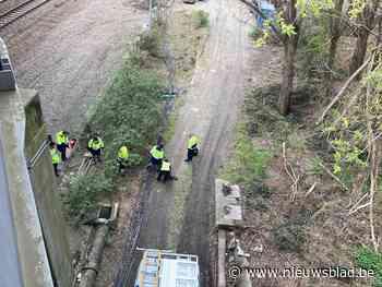 """Treinverkeer verstoord door poging kabeldiefstal: """"Dit is exact waarom we koperkabels vervangen door aluminium"""""""