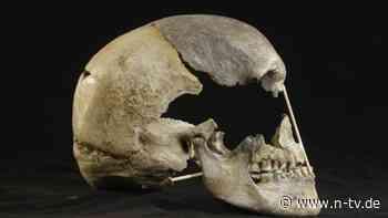 Ausgestorbene Art aus Europa: Gene des ältesten Menschen aufgespürt