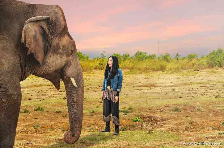 Cher Explains the Fight for Kaavan in 'Cher & The Loneliest Elephant' Trailer: 'He Was Suffering'