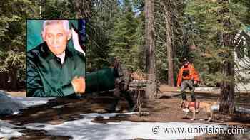 Continúa búsqueda por tierra y aire de anciano hispano perdido en la montaña del condado de Fresno - Univision