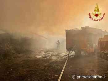 Incendio in un'azienda di legname a Sesto Calende - Prima Saronno