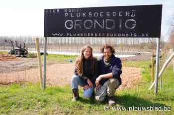 """Nieuwe zelfplukboerderij in Gentse rand: """"Al 250 gezinnen op de wachtlijst"""""""