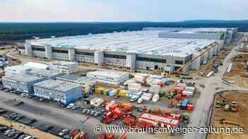 Gigafactory: Industrie unterstützt Teslas Kritik an deutscher Bürokratie