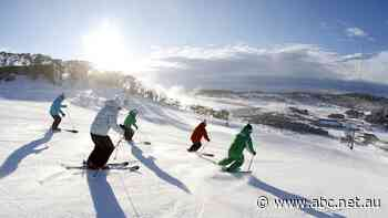 Snowy Mountains housing crisis, van life ban chills businesses as ski season looms