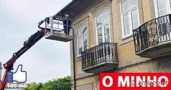 """Vizela instala """"espigões"""" na cidade para afastar pombos - O MINHO"""