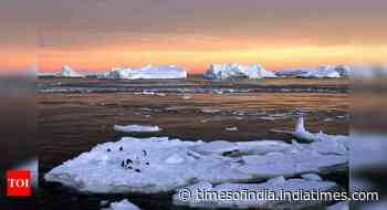 Third of Antarctic ice shelf area at collapse risk due to global warming