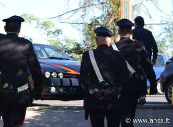 Rapine e furti a Siena, 8 fermati - Agenzia ANSA