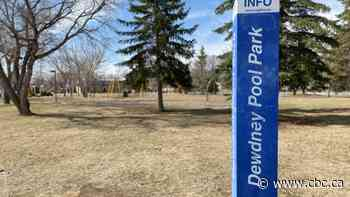 Regina commission votes 8-1 to rename Dewdney Park to Buffalo Meadows Park, council to make final decision - CBC.ca