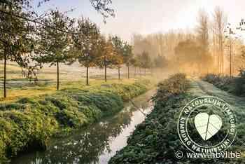 Limburgse Wandelchallenge: de eeuwenoude beemden van de Momb... (Alken) - Het Belang van Limburg Mobile - Het Belang van Limburg