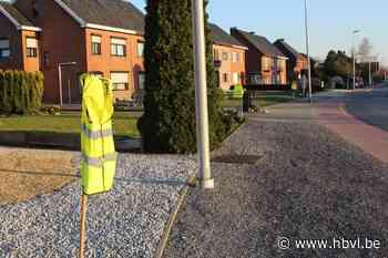 """Meerdegatstraat hangt vol met fluo hesjes: """"Om de haverklap rolt auto in onze voortuin"""" - Het Belang van Limburg"""