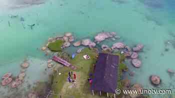 "Por llegada de turistas a Bacalar, piden ""sana distancia con estromatolitos"" - Uno TV Noticias"