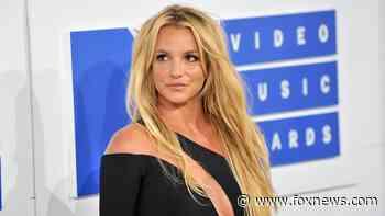 Britney Spears receives coronavirus vaccine: 'I felt nothing' - Fox News