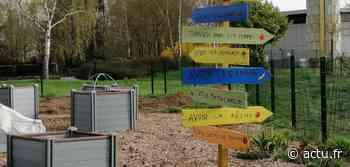 VIDÉO. Le jardin partagé d'Argentan devient le Jardin aux mille couleurs - actu.fr