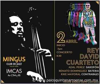 El jazz recibe más promoción mediante un club en Playa del Carmen – Palco Noticias - Palco Quintanarroense