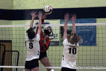 No. 6 Lamar girls volleyball thrives on power from the front row - CHSAA Now