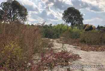 BEAUCAIRE Le projet du quartier Sud Canal suspendu après la découverte de vestiges archéologiques - Objectif Gard