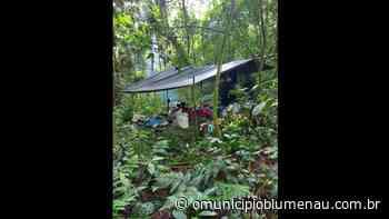 Polícia encontra acampamento clandestino usado para furtar palmitos no Vale do Itajaí - O Município Blumenau