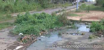 Comunidad de Maripa exige sanear foco de insalubridad que afecta a más de 50 hogares - Correo del Caroní - Correo del Caroní