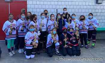 Wellesley sports catch-up: Winter All-Scholastics named; U12 hockey girls win championship - The Swellesley Report