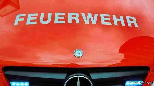 Arbeitsunfall: Tödlicher Unfall in Waltersdorf - junger Mann stürzt mit Gabelstapler in Aufzugsschacht - moz.de