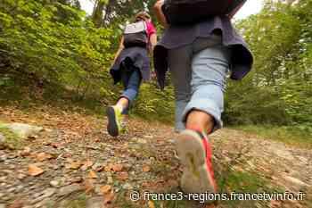 Clermont-Ferrand, Aurillac, Le Puy-en-Velay, Moulins : des idées de balades à moins de 10 km de chez vous - France 3 Régions