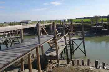 """La Barre-de-Monts : les 99 pontons en bois du """"port chinois"""" reconstruits - actu.fr"""