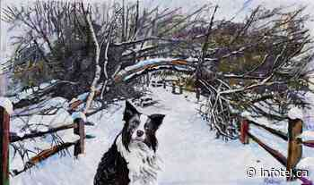 Auction nets hefty price for painting of Lumby's favourite dog | iNFOnews | Thompson-Okanagan's News Source - iNFOnews