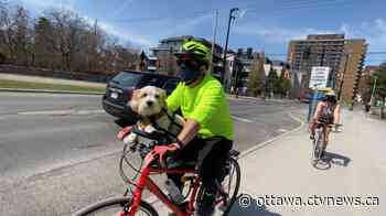 Cyclists roll onto pathways as Ottawa enjoys summer-like weather - CTV Edmonton