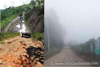 Vías Agrícolas: Urge «un cariñito» al campo de Fusagasugá, Cundinamarca - Noticias Día a Día