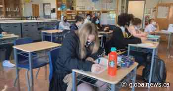 Calgary Board of Education won't pilot Alberta's draft K-6 curriculum - Globalnews.ca